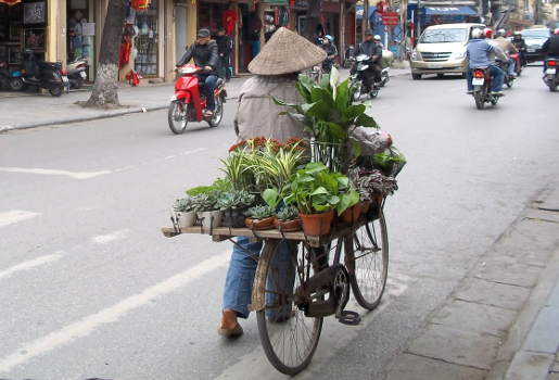 vietnam bicycle freight