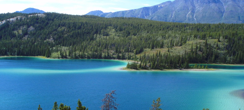 Turquoise Lake along the Klondike Highway